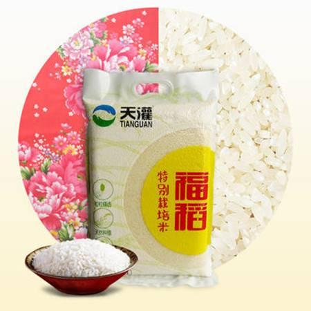 范县2.5kg天灌福稻 地标产品 绿色食品
