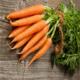 农家自产 5斤即食红萝卜蔬菜