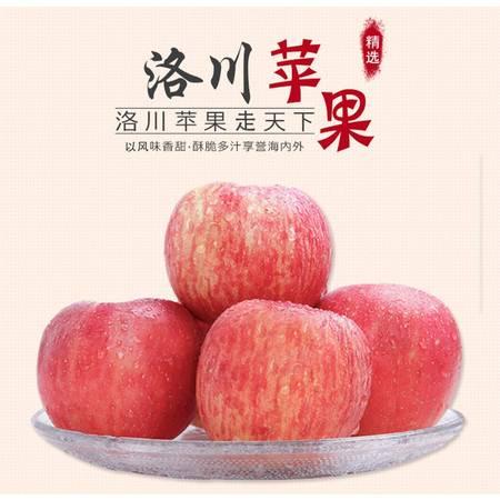 陕西特产洛川红富士苹果非烟台苹果10斤装