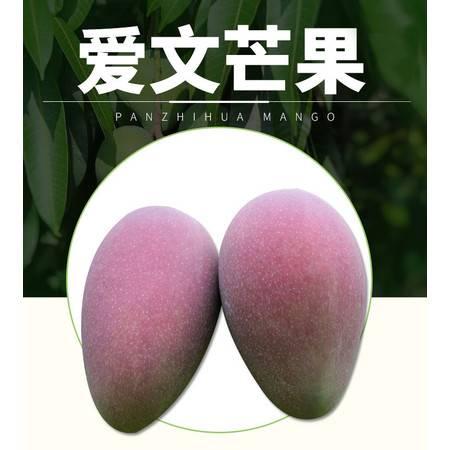 攀枝花爱文芒果大苹果芒新鲜水果9-10斤