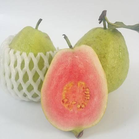 广西现摘红心番石榴芭乐 新鲜水果 清脆清甜 高山种植10斤装