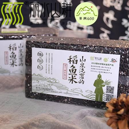 【景宁600】景宁英川稻鱼米 黑米 山泉浇灌的稻鱼黑米 1斤装
