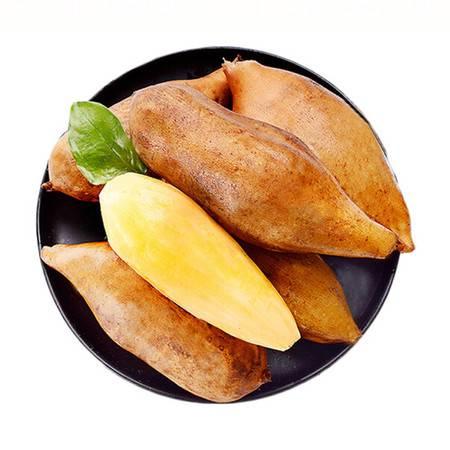 【领券立减12元】雪莲果5斤/9斤包邮 现挖云南雪莲果清甜雪莲 新鲜水果