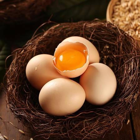 【领券立减5元】农家散养土鸡蛋40枚包邮 濮阳鸡蛋新鲜鸡蛋初生蛋 山鸡蛋新鲜蛋草鸡柴鸡蛋