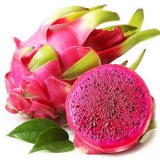 红心火龙果中果长叶进口果非国产短叶子果
