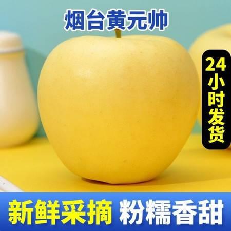 黄金帅苹果黄元帅苹果烟台水果新鲜3/5/10斤软面黄香蕉当季粉金帅