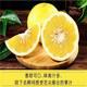 【邮政扶贫】预售 南部特产   台湾黄金葡萄蜜柚 现摘 现发 柔嫩 多汁 爽口(4—6个5斤包邮)