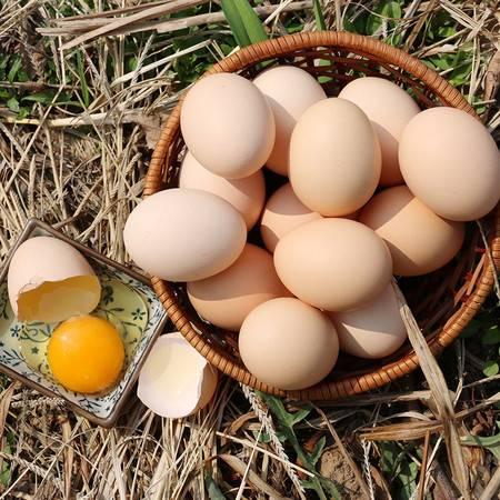 【南部扶贫馆】石河镇黑滩村黄家树农家自产土鸡蛋10枚装