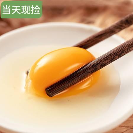 【南部扶贫馆】大王镇农家自产土鸡蛋10枚装