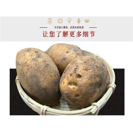 顾创绿野 纳雍黄心土豆1000g