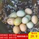 【德阳邮政】艾苜农场  绿壳粉壳土鸡蛋 各15枚混装 30枚/件 邮乐919 9月1日起下单减15
