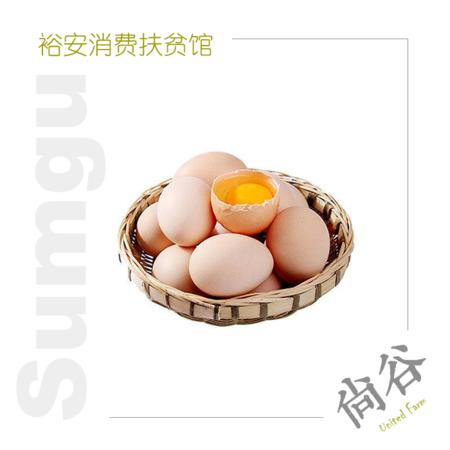 金裕继红 土鸡蛋 20枚 箱装 破损包赔 能吃到小时候味道的生态绿色土鸡蛋