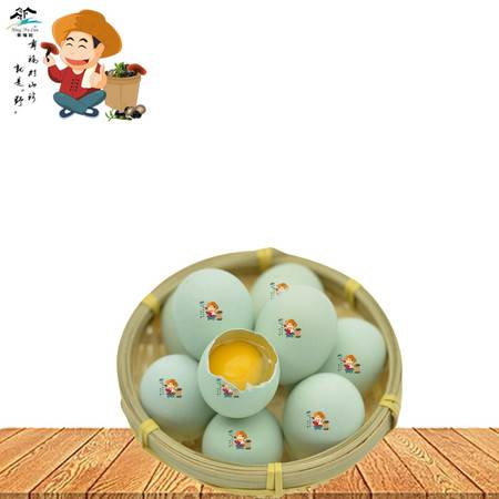 全国包邮幸福村牌山林散养乌鸡蛋10枚一箱农家