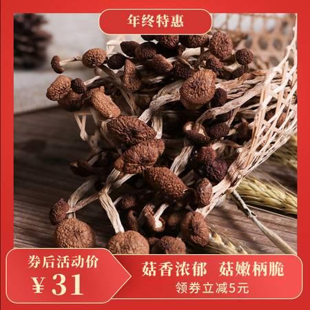 【邮政惠农合作】富佳 茶树菇250g 精选古田食用菌基地食材 土特产山货