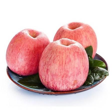 红富士苹果3斤/箱(单果70-80mm)