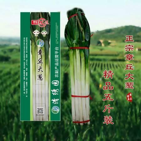 【山东特产】正宗章丘大葱礼盒装 新鲜大葱5斤装原产地直发