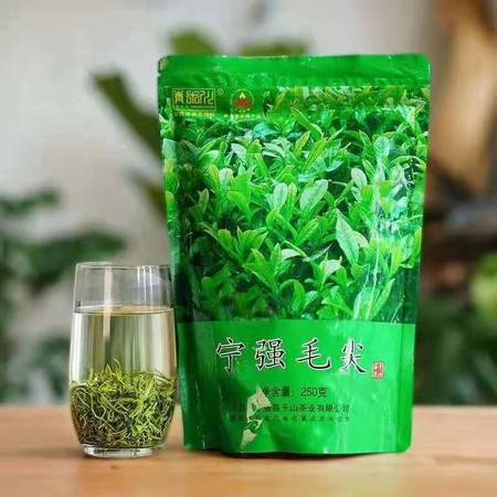 【邮政助农】绿茶2021新茶汉中宁强毛尖高山云雾浓香型散装250g茶叶