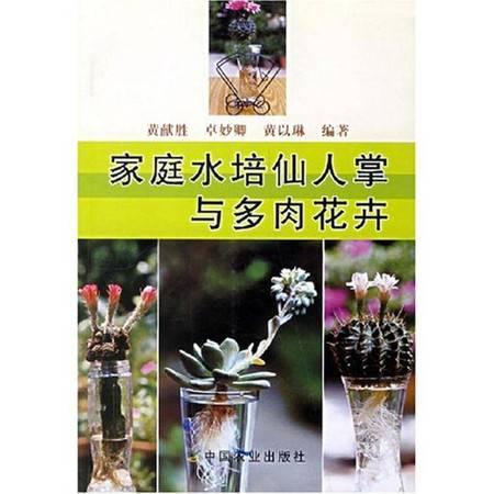 家庭水培仙人掌与多肉花卉