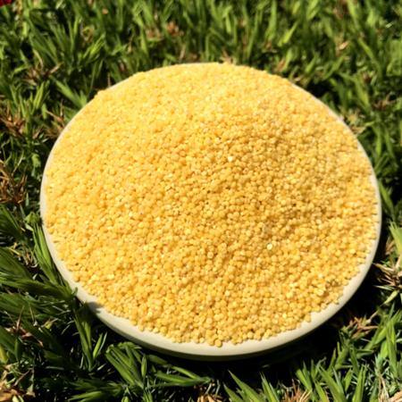 农家自产 小米