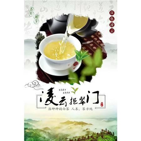 【凌云扶贫馆】凌云挹翠门  浩坤神韵白茶