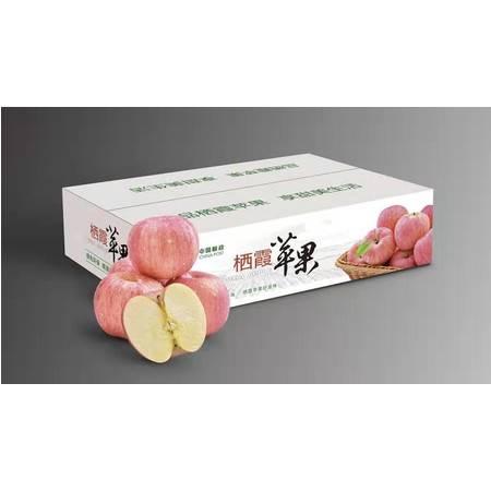 山东栖霞红富士苹果5斤/10斤装(全国包邮)