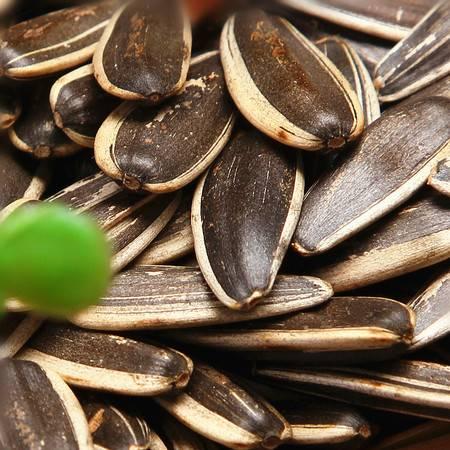 原味瓜子250g*6包坚果零食炒货散装熟葵花籽干炒瓜子小包装大颗粒