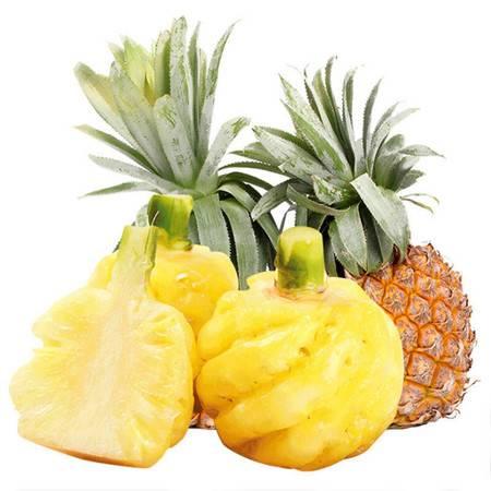 【送菠萝刀】泰国香水小菠萝5斤新鲜迷你菠萝热带孕妇水果非 凤梨