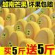 【买5斤送5斤】越南玉芒新鲜芒果10斤装5/2斤大青芒果批发包邮