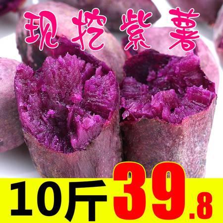 紫薯整箱10斤新鲜农家香薯糖心板栗红薯沙地小山芋小地瓜蜜薯番薯