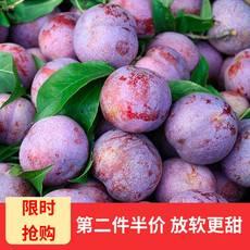领券第二件半价【预售】 黑布林李子(72小时发货) 新鲜水果酸甜口味   5斤装