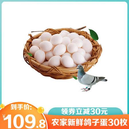 【顺丰包邮领券立减30元】鸽子蛋 新鲜包邮30枚农家散养土鸽蛋孕妇宝宝辅食生鲜白鸽蛋信鸽蛋