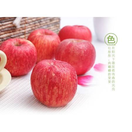 农家自产 红富士苹果2斤装