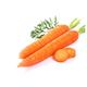 【衡水饶阳】农家自产 新鲜沙土地胡萝卜5斤装  包邮