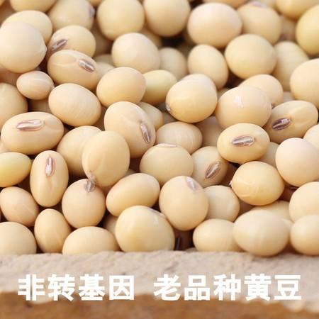 农家自产  黄豆3斤装