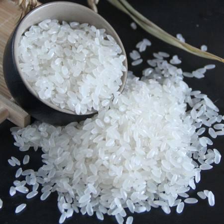 农品特卖 溢田东北大米10kg新米长粒香大米20斤黑龙江大米粳米
