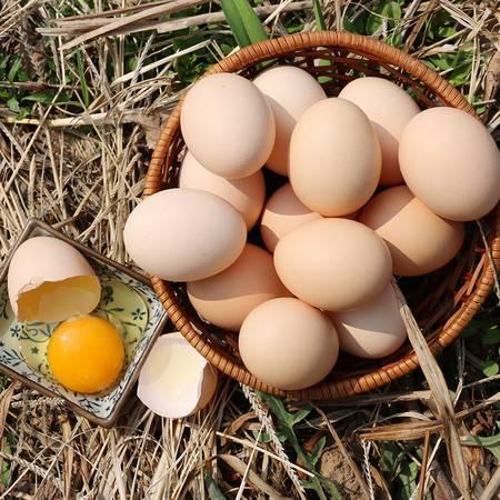 【邮政助农】安徽六安大别山农家土鸡蛋30枚 农家散养土鸡鸡蛋包邮