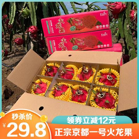 【领劵立减12元】金都一号红心火龙果大果5斤红肉火龙果应季水果包邮