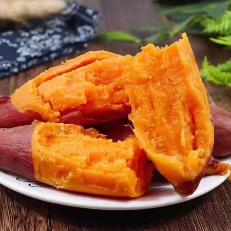 (灵寿县)灵寿县红薯
