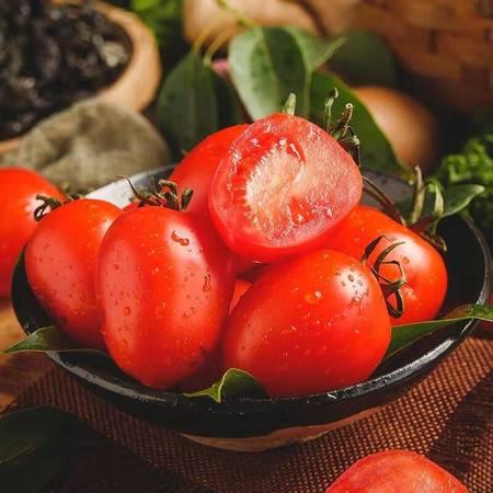 【下单领券减10元】有滋有菋圣女果5斤装 新鲜小柿子贝贝小番茄西红柿水果蔬菜时令应季现摘现发包邮