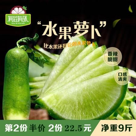 【第二份半价】有滋有菋水果青萝卜5斤5-7个装 新鲜非沙窝胡萝卜补充维生素现摘现发蔬菜包邮