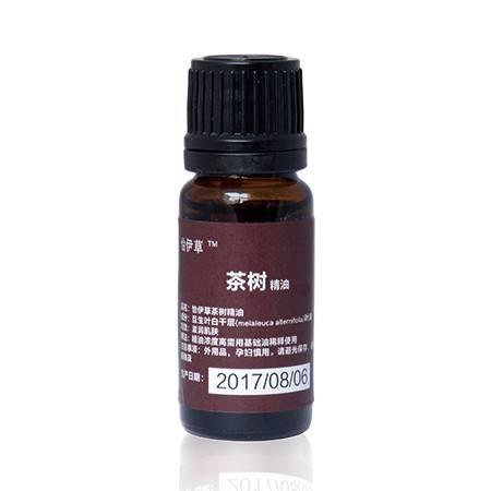 茶树单方精油图片