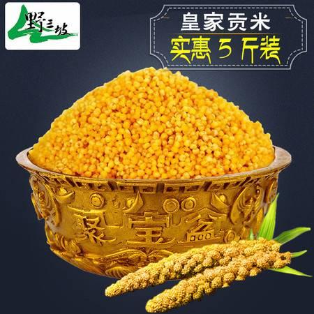 野三坡_黄小米 新米5斤农家自产 吃的小米粥小黄米五谷杂粮