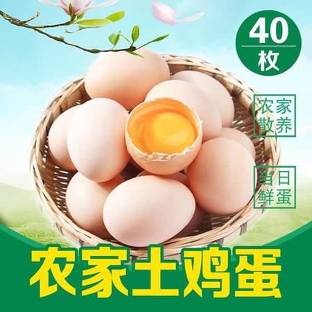 大别山正宗农家土鸡蛋山林散养柴鸡蛋月子笨鸡蛋草鸡蛋固始笨鸡蛋