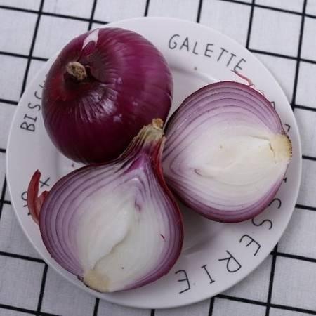 2019紫红皮大头洋葱净重5-10斤包邮新鲜农家蔬菜紫红皮洋葱圆葱头