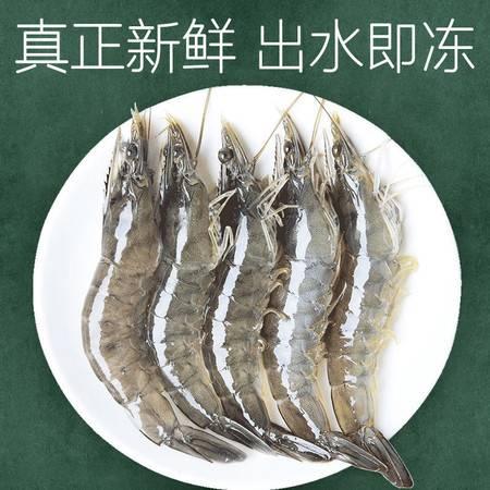 整箱超大海捕大虾鲜活基围虾青岛大虾冻虾鲜虾对虾活虾海鲜水产