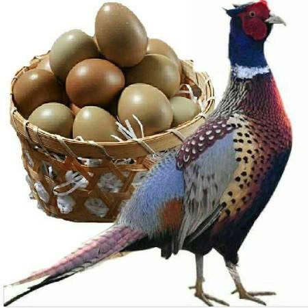 【30枚山鸡蛋】七彩山鸡蛋正宗农村散养土鸡蛋笨草鸡蛋30枚精选