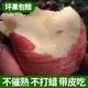 现摘陕西红富士苹果当季新鲜孕妇水果脆甜冰糖心整箱10斤批发