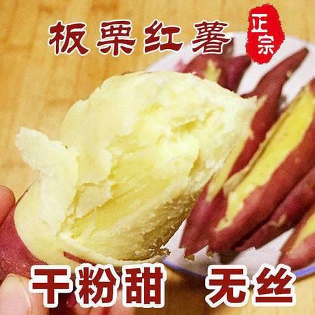 【粉糯干甜】板栗红薯新鲜番薯地瓜农家现挖虢王红薯2/5/10斤套餐