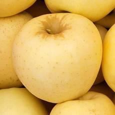 山东烟台当季新鲜水果粉苹果非栖霞红富士 黄金帅苹果10斤装
