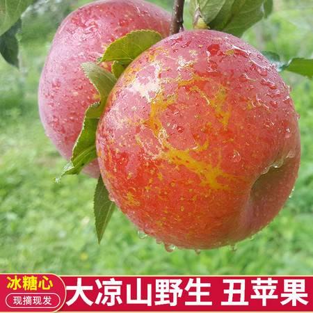 大凉山丑苹果冰糖心5斤野生新鲜嘎啦果批发应季水果脆甜现摘